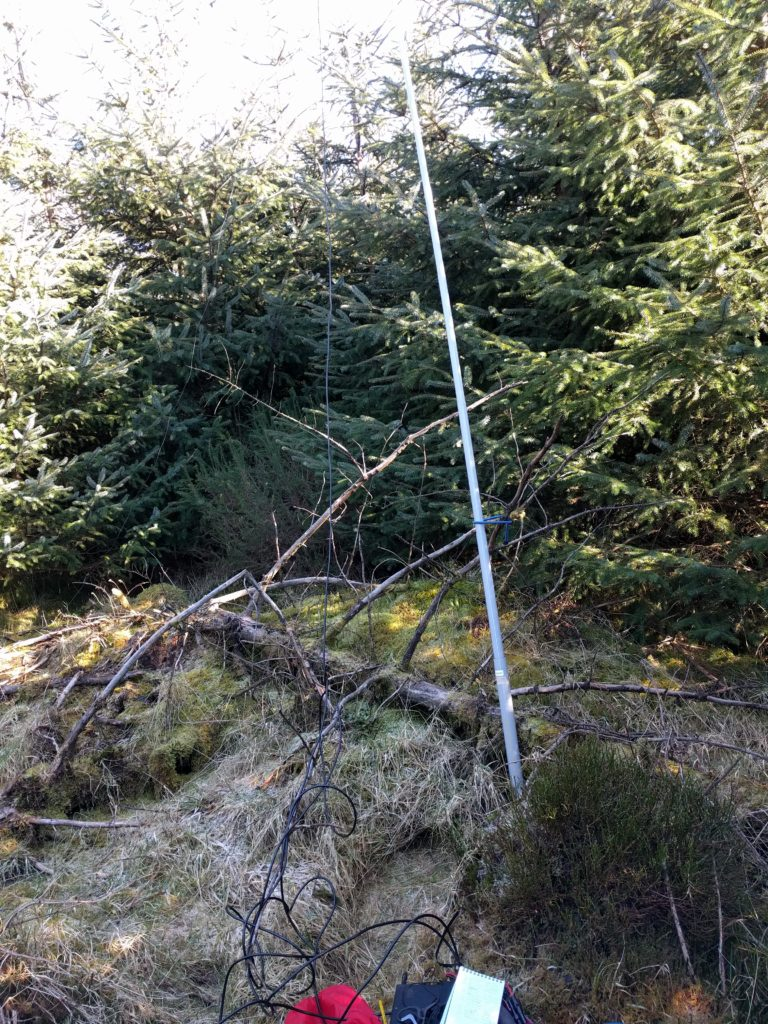 My fibreglass mast in a small clearing in the woods