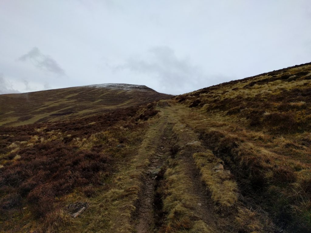 Muddy rutted path over moorland