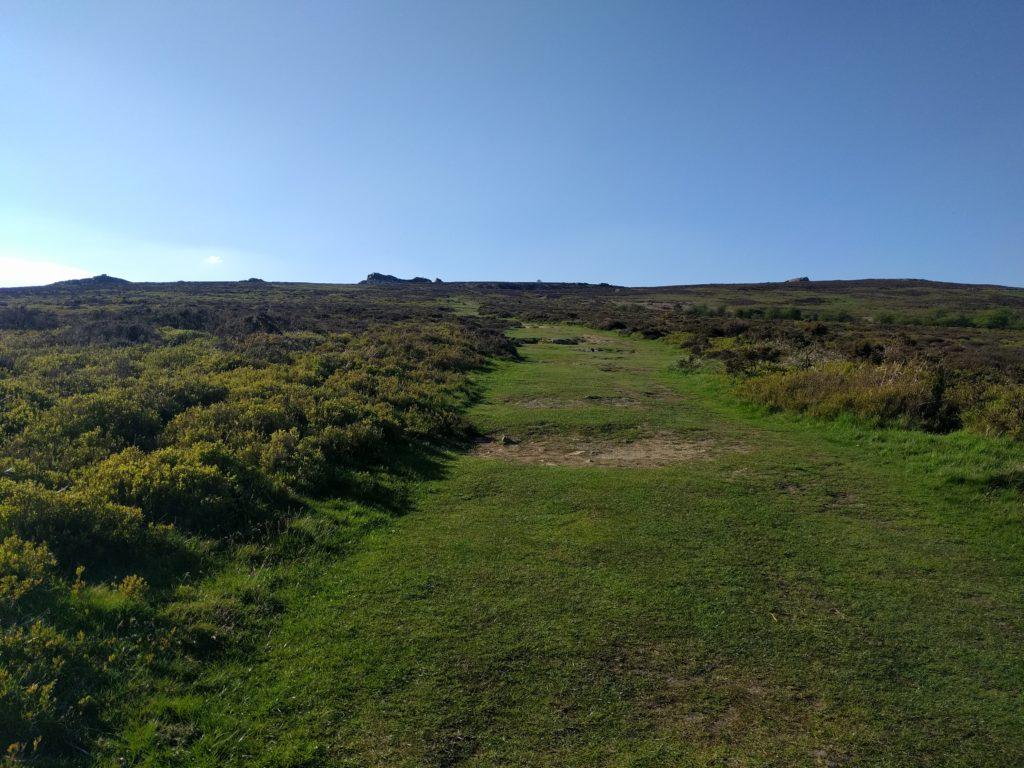 Grass path through gorse towards stones in distance