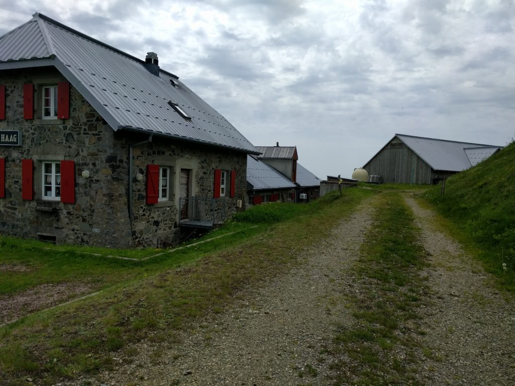 Track beside farm buildings