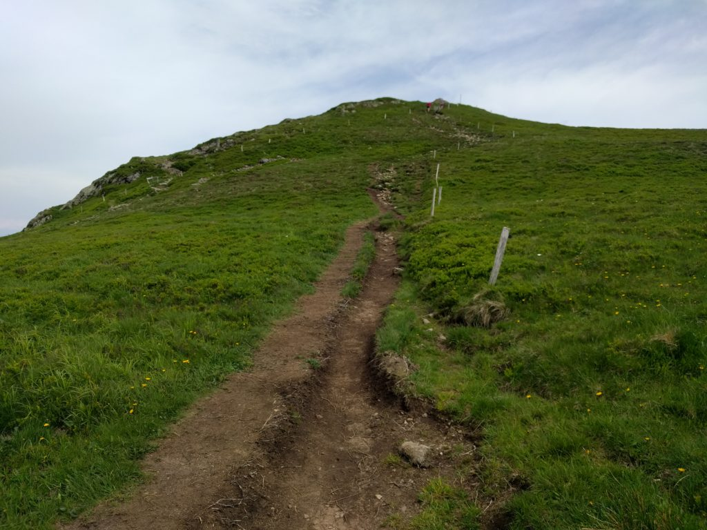 Path up the hill