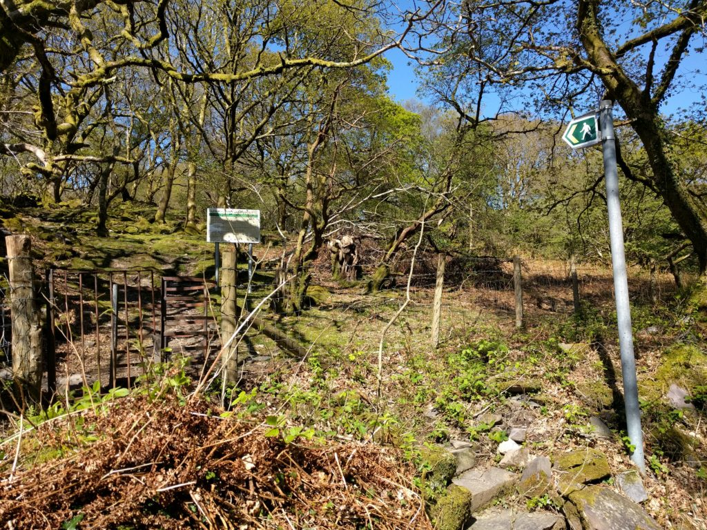 Signposted track through trees